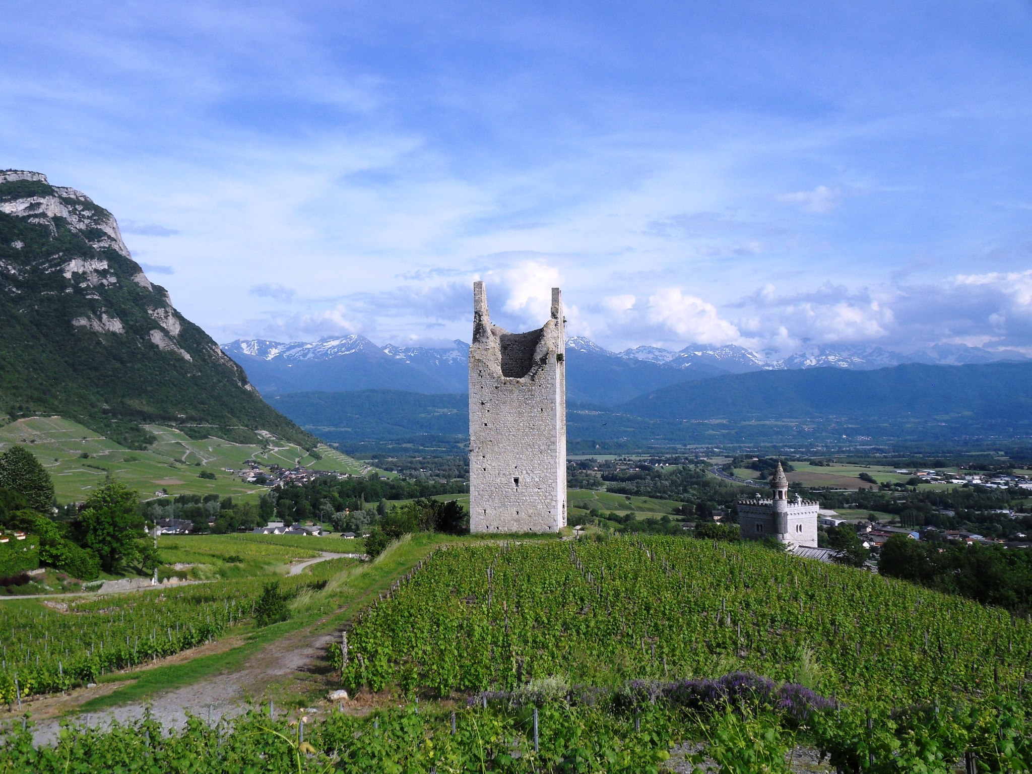 beautiful castel in the vineyard