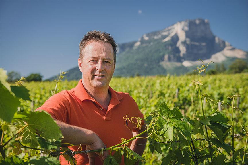 Vins philippe viallet